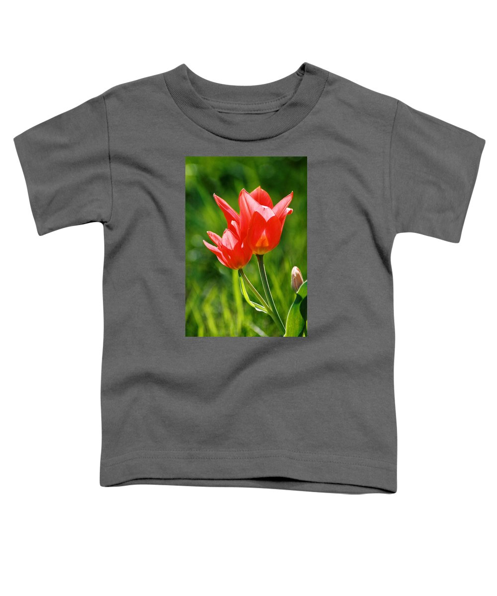 Flowers Toddler T-Shirt featuring the photograph Toronto Tulip by Steve Karol