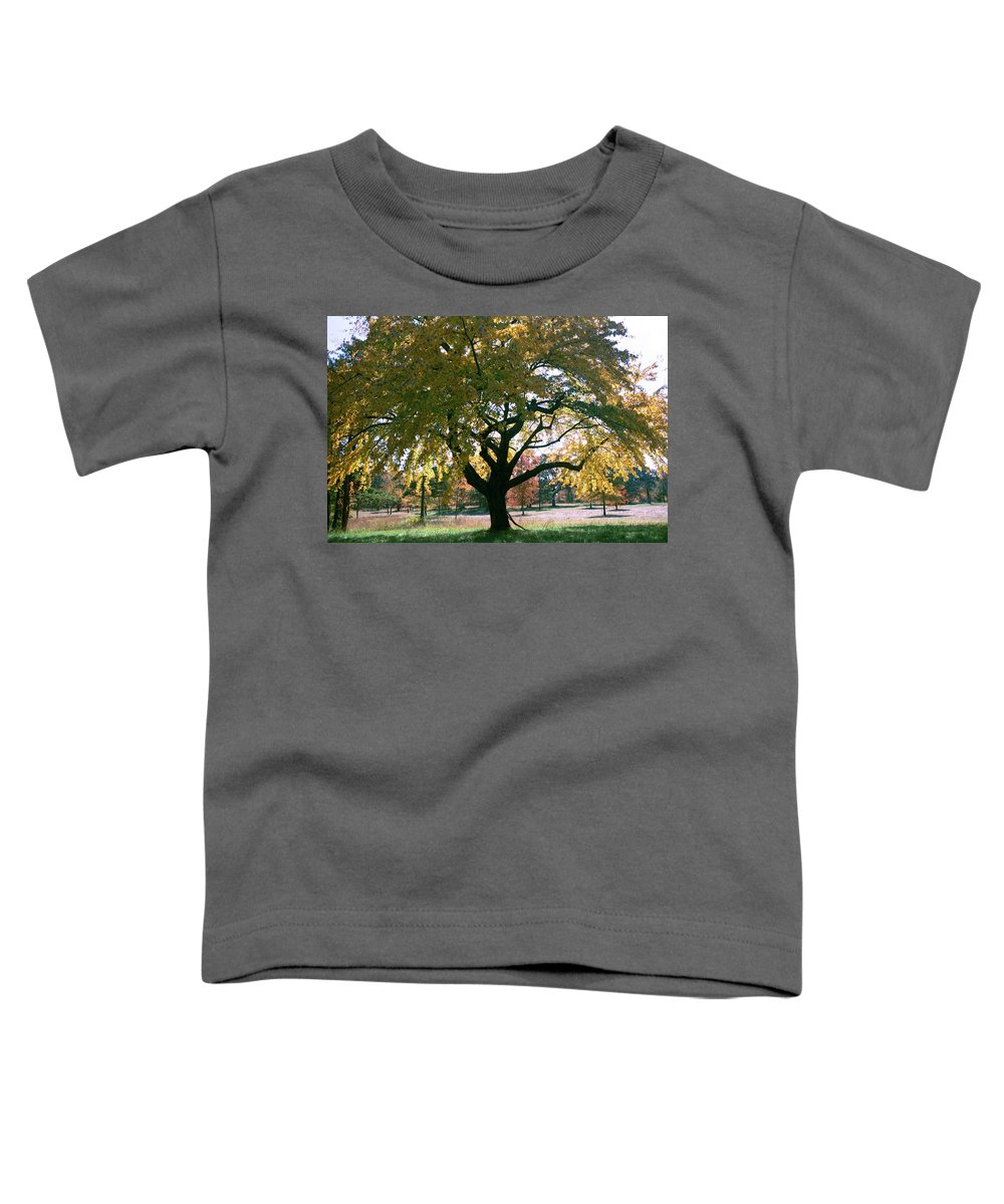 Tree Toddler T-Shirt featuring the photograph Tree by Flavia Westerwelle