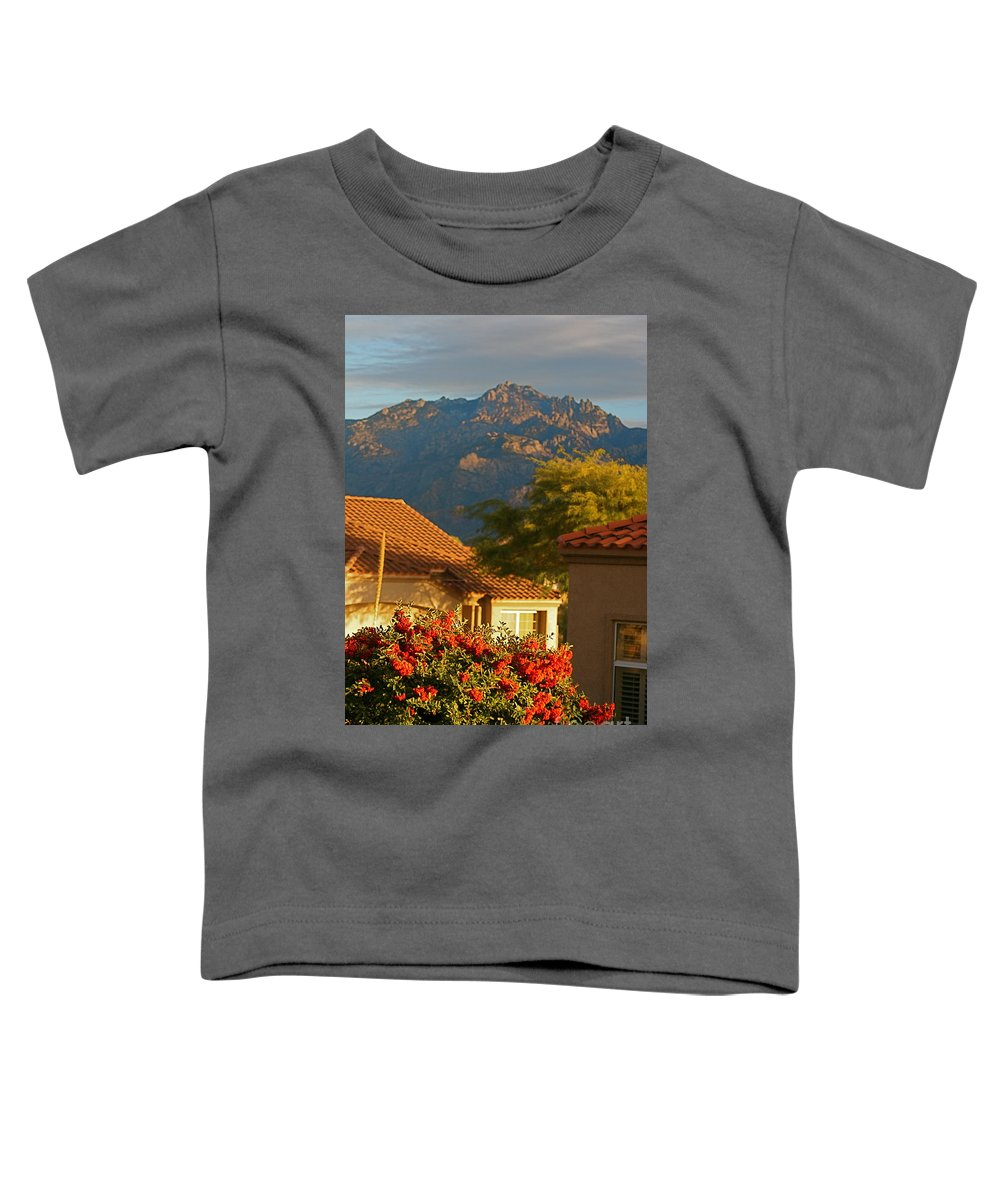 Mountains Toddler T-Shirt featuring the photograph Tucson Beauty by Nadine Rippelmeyer