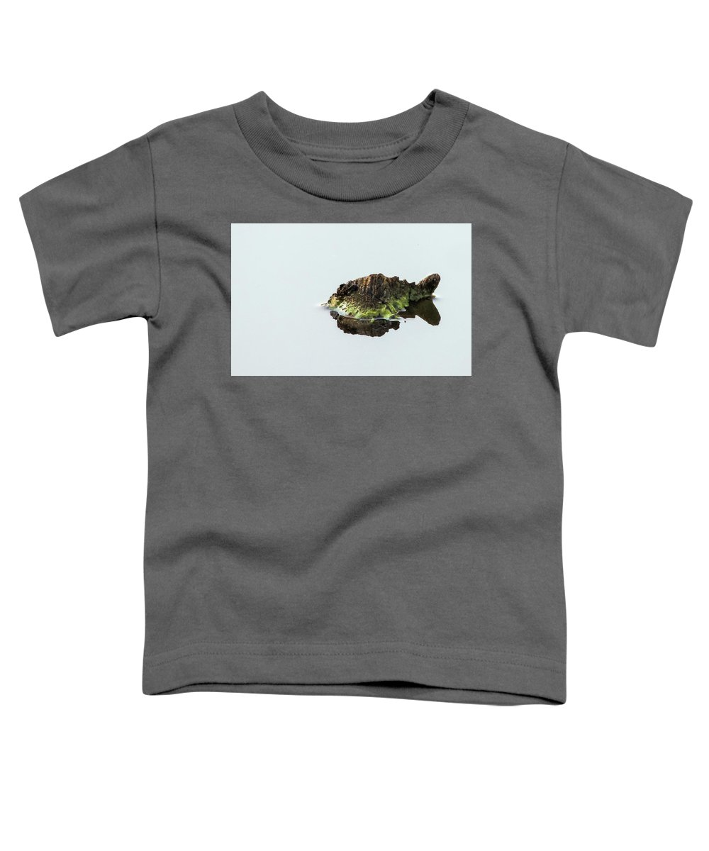 Turtle Toddler T-Shirt featuring the photograph Turtle or Mountain by Randy J Heath