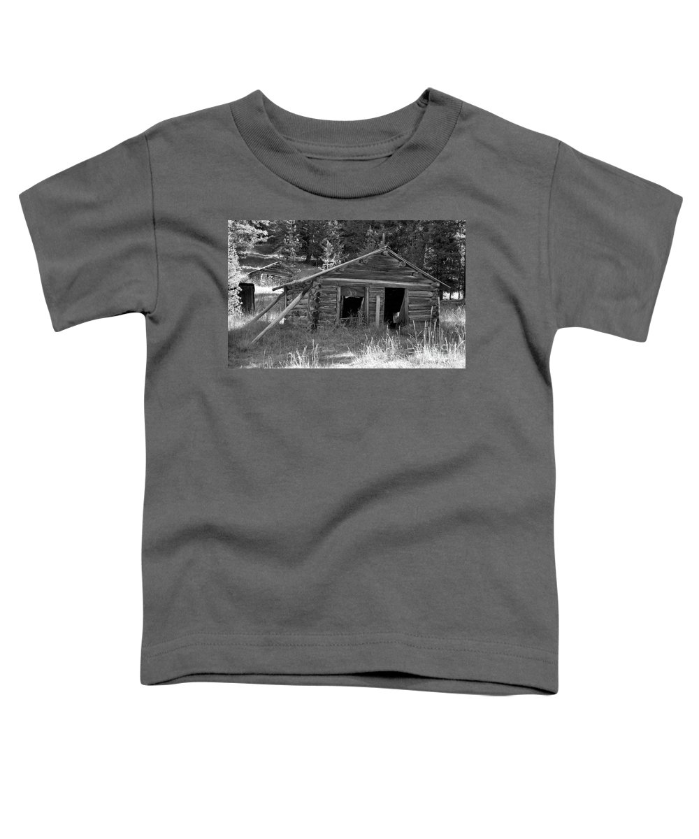 Abandoned Toddler T-Shirt featuring the photograph Two Cabins One Outhouse by Richard Rizzo