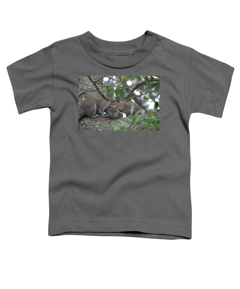 Squirrel Toddler T-Shirt featuring the photograph Why Me by Rob Hans