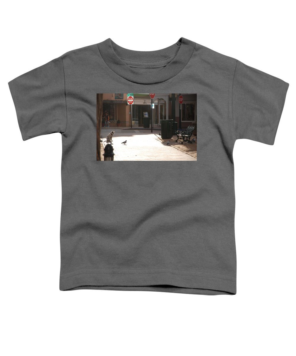 Dog Toddler T-Shirt featuring the photograph Why Question Mark by Rob Hans