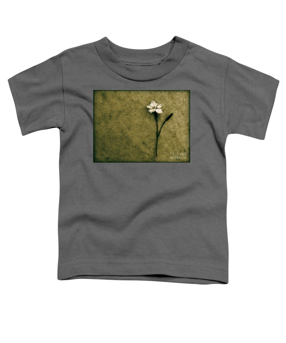 Dipasquale Toddler T-Shirt featuring the photograph Will You Stay With Me Will You Be My Love by Dana DiPasquale