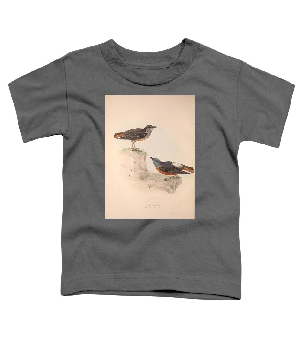 Nature Toddler T-Shirt featuring the painting Different Types Of Birds Illustrated By Charles Dessalines D Orbigny 1806-1876 21 by Charles Dessalines D Orbigny