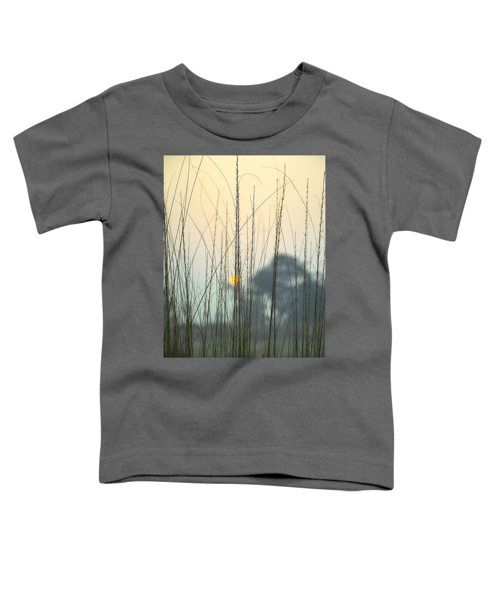 Winter Toddler T-Shirts