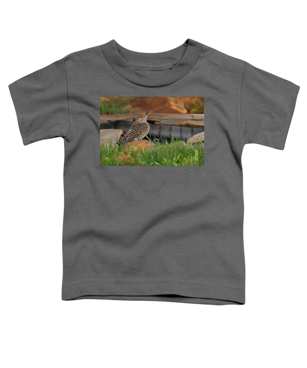 Northern Toddler T-Shirt featuring the photograph Northern Flicker by Gary Langley