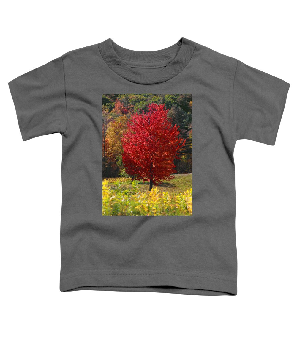 Red Maple Tree Toddler T-Shirt featuring the photograph Red Maple Tree by Trevor Slauenwhite