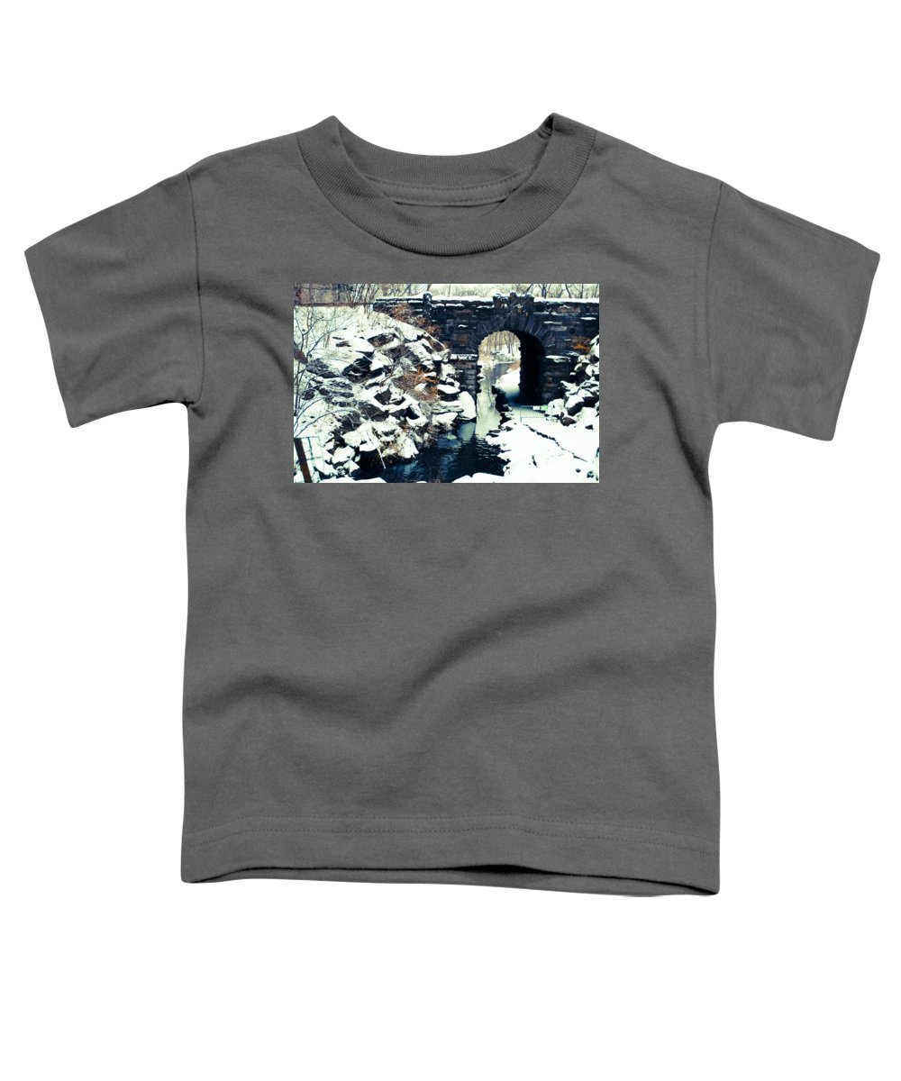 New York Snow Photographs Toddler T-Shirts