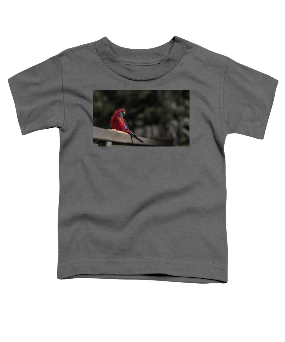 Rosella Toddler T-Shirt featuring the photograph Rosella 1 by Leigh Henningham