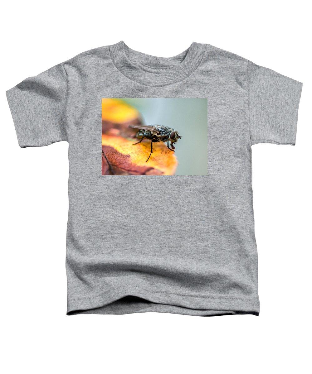 Steve Harrington Toddler T-Shirt featuring the photograph Troublemaker by Steve Harrington