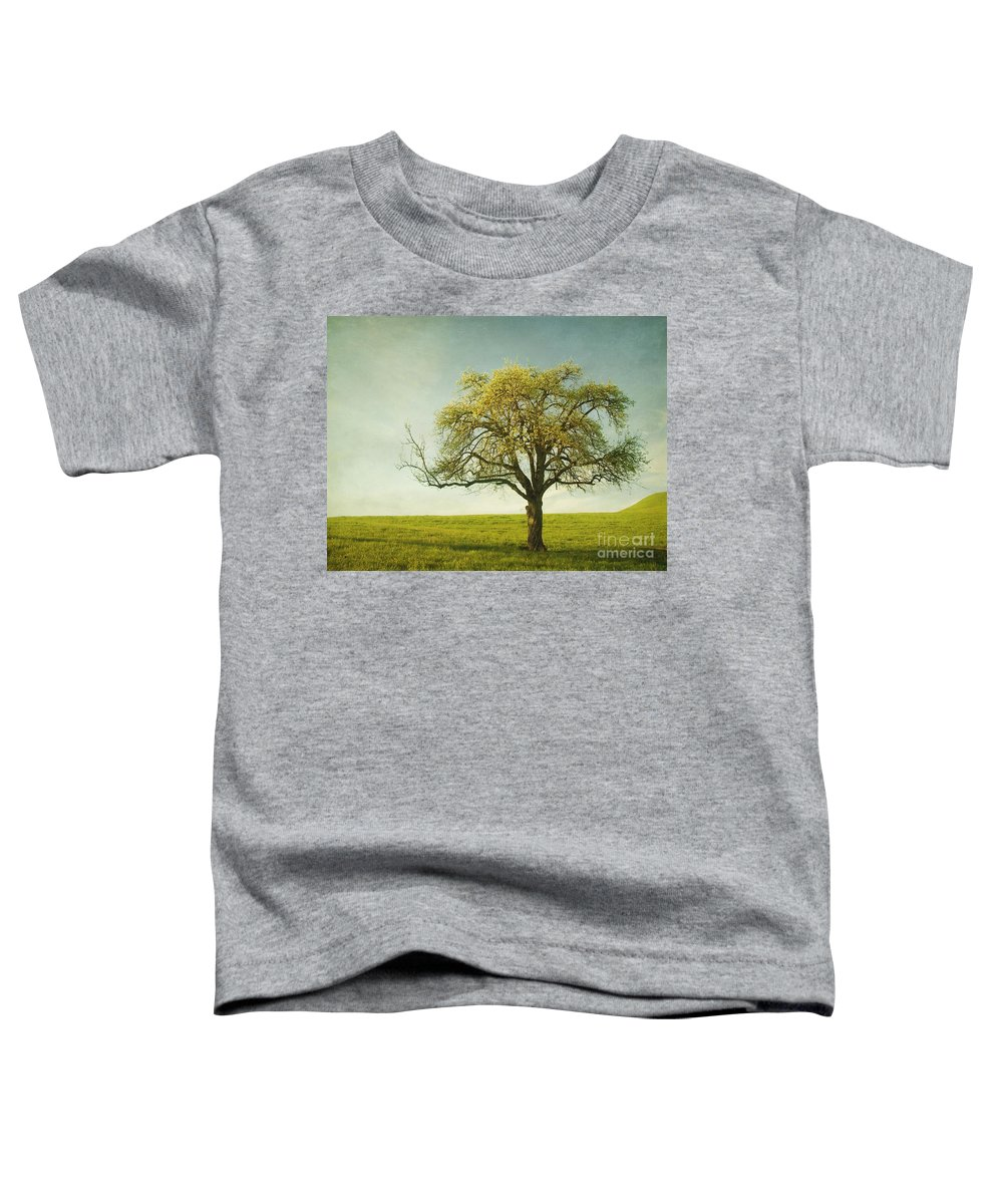 Appletree Toddler T-Shirt featuring the photograph Appletree by Priska Wettstein