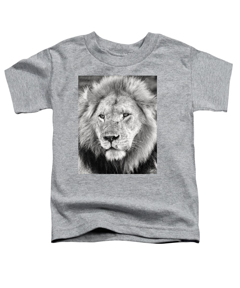 3scape Toddler T-Shirt featuring the photograph Lion King by Adam Romanowicz