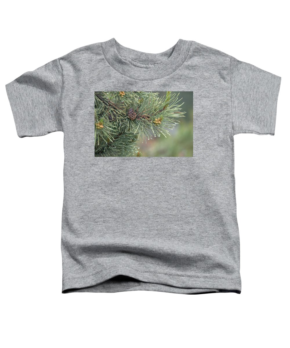 Pine Toddler T-Shirt featuring the photograph Lodge Pole Pine In The Fog by Frank Madia