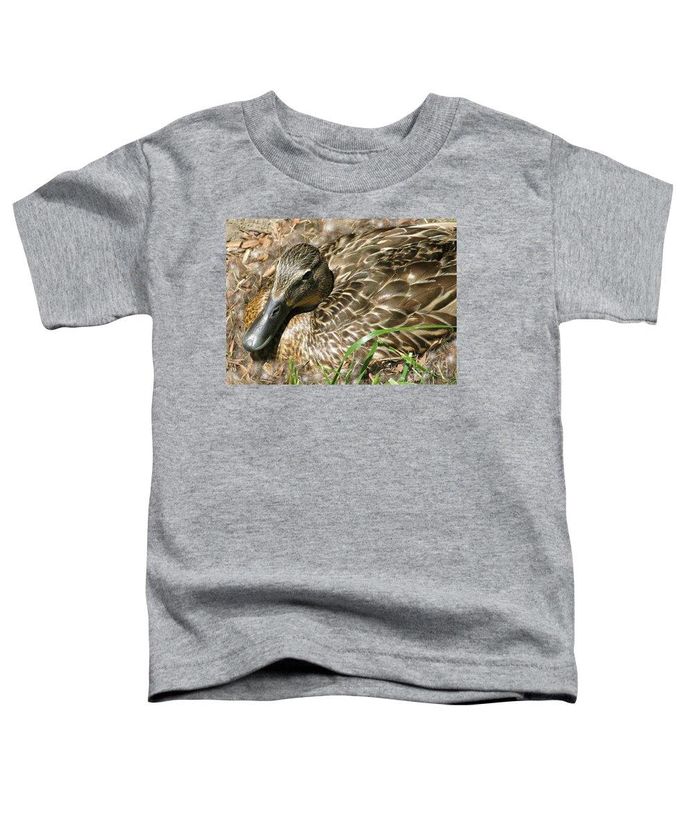 Mallard Toddler T-Shirt featuring the photograph Nesting Mallard by Ann Horn