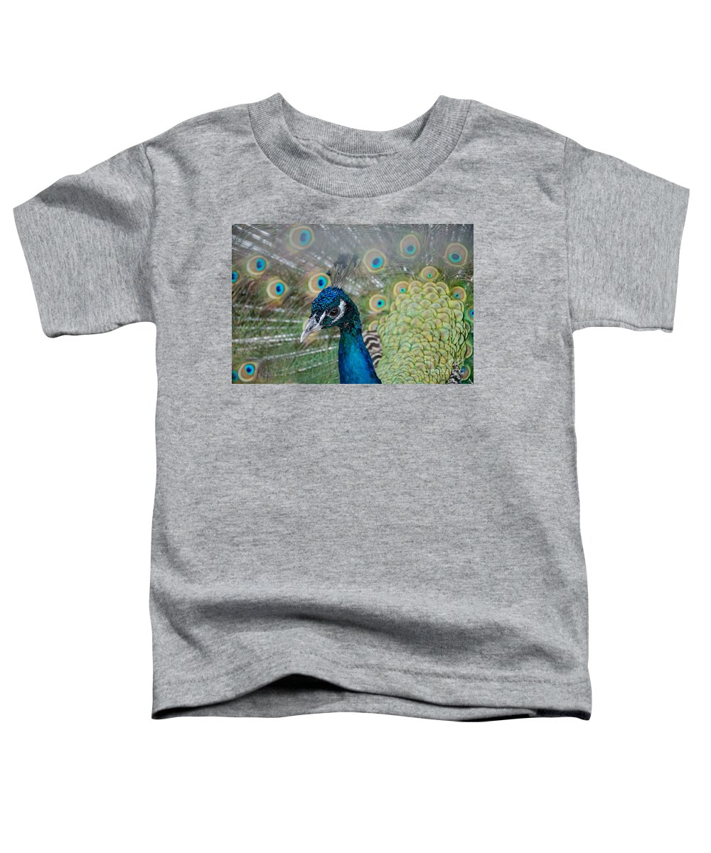 Peacock Toddler T-Shirt featuring the photograph Peacock Portrait by Laurel Best