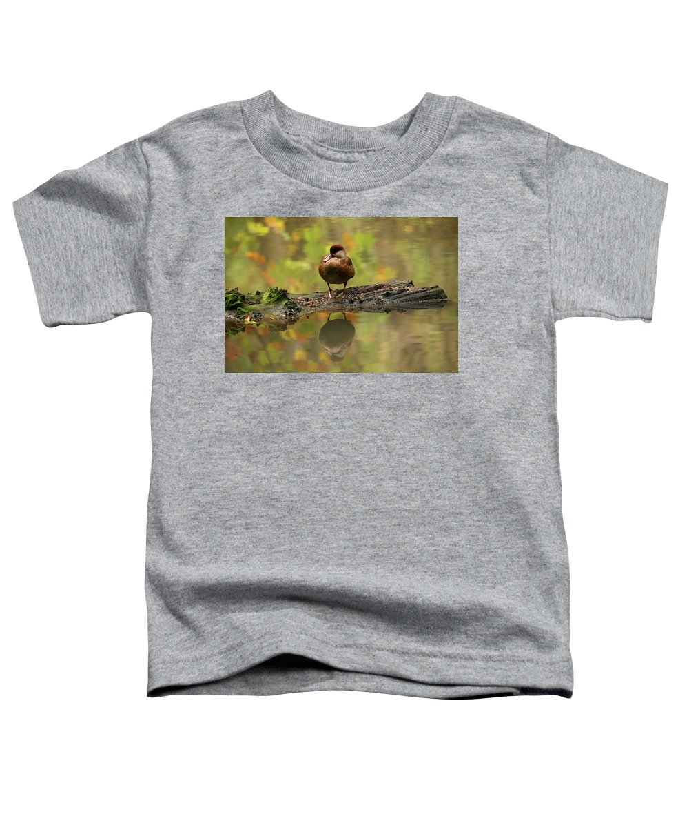 Wildlife Toddler T-Shirt featuring the photograph Red Crested Pochard Female Netta Rufina by David Santiago Garcia