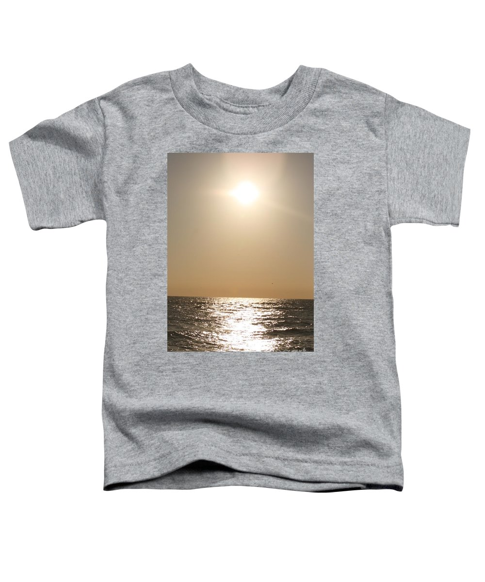 Silver Toddler T-Shirt featuring the photograph Silver And Gold by Nadine Rippelmeyer