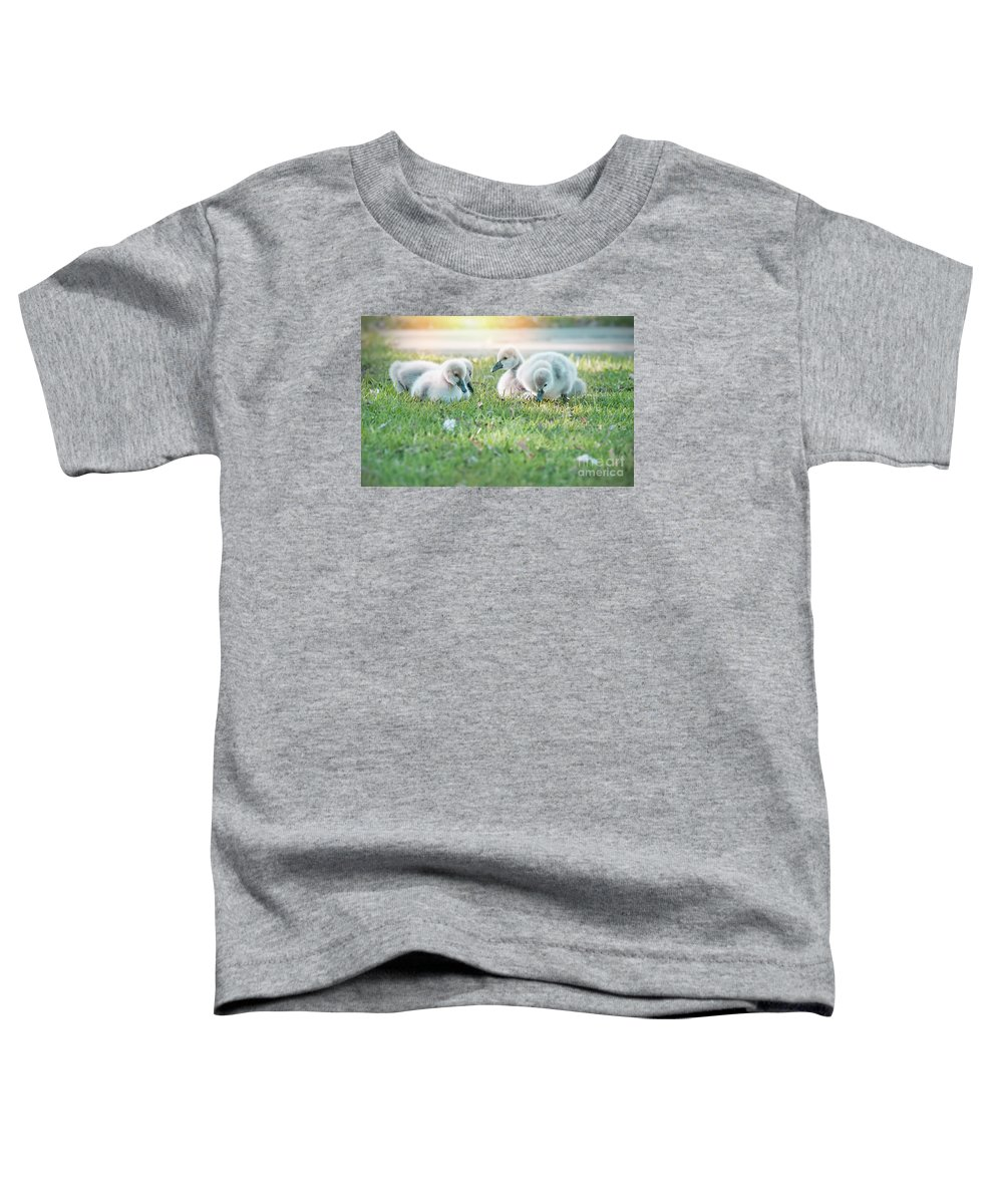 Babies Toddler T-Shirt featuring the photograph Spring Babies by Kym Clarke