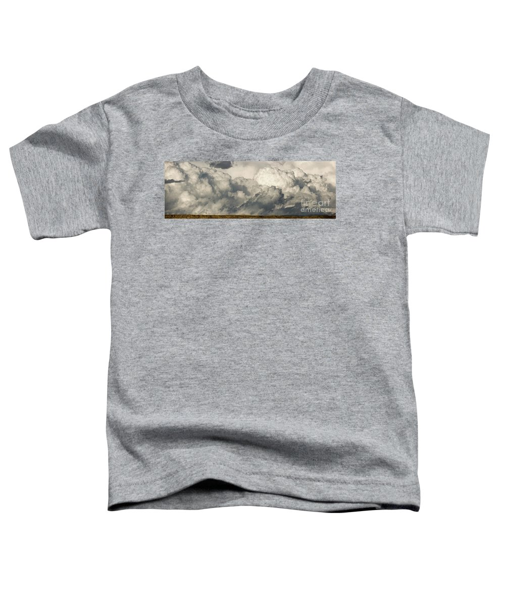 00431112 Toddler T-Shirt featuring the photograph Storm And Sagebrush Desert by Yva Momatiuk John Eastcott