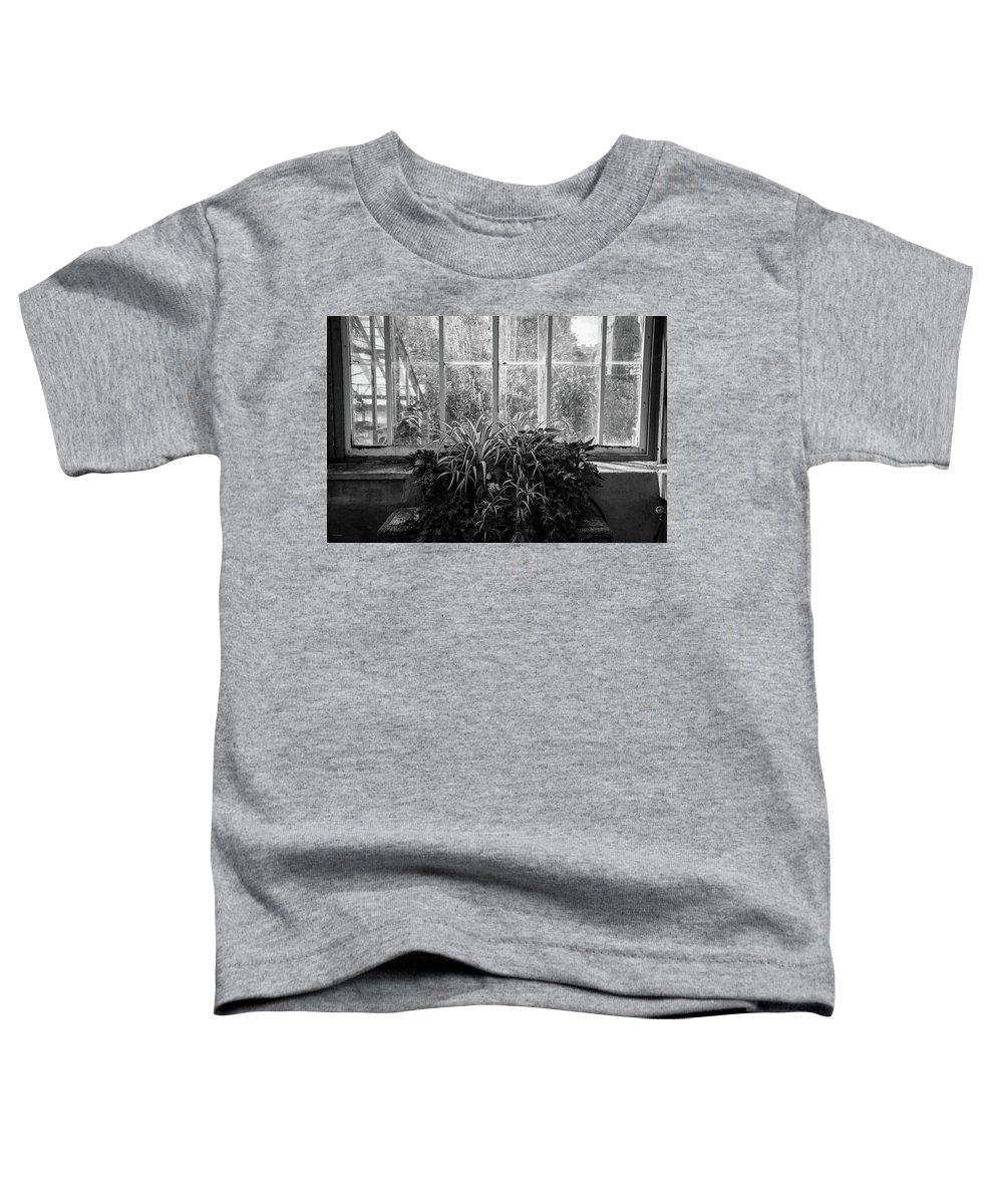 Allan Toddler T-Shirt featuring the photograph Allan Gardens by Ross Henton