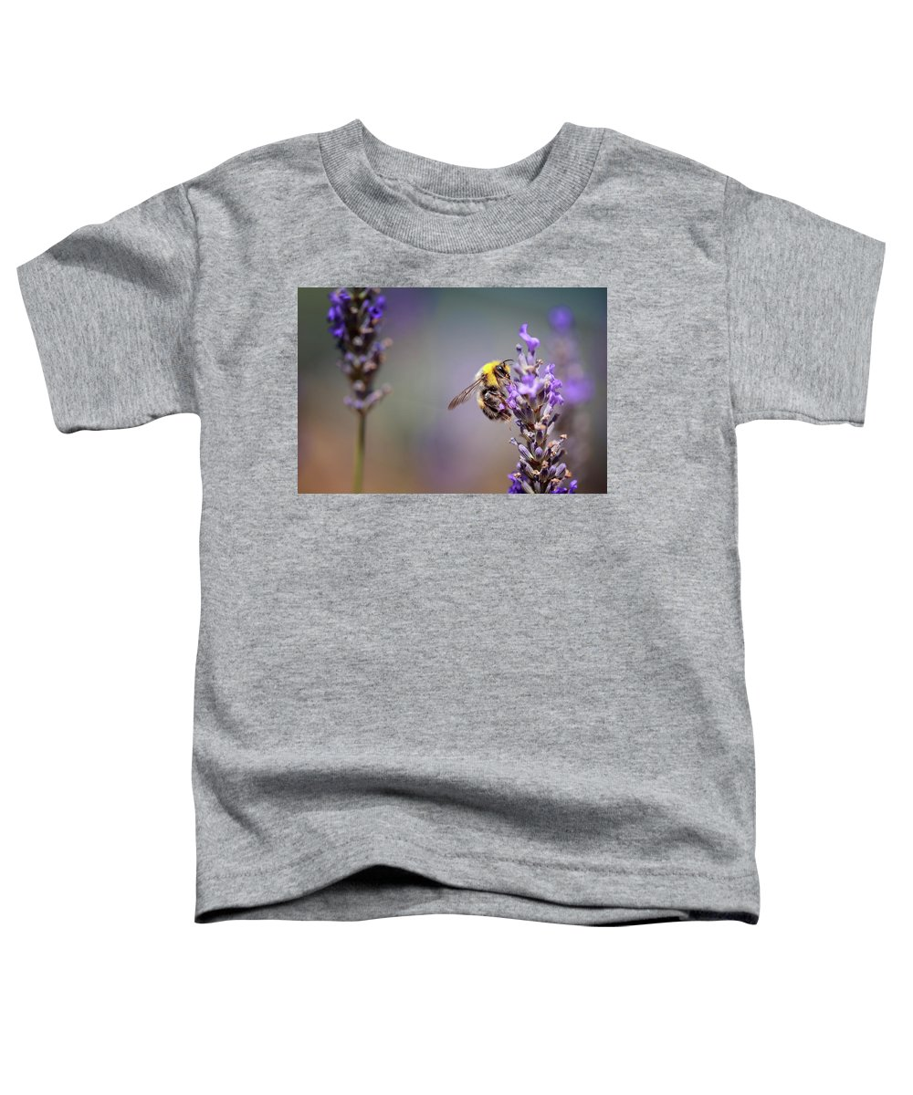 Lavender Toddler T-Shirt featuring the photograph Bumblebee And Lavender by Nailia Schwarz