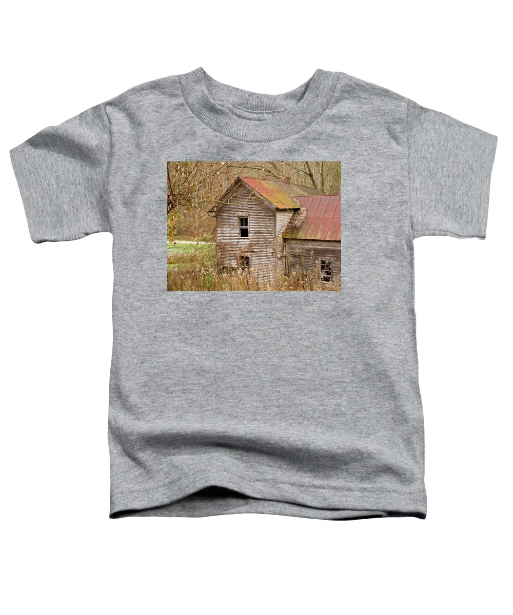 Abandoned Toddler T-Shirt featuring the photograph Abandoned House With Colorful Roof by Douglas Barnett