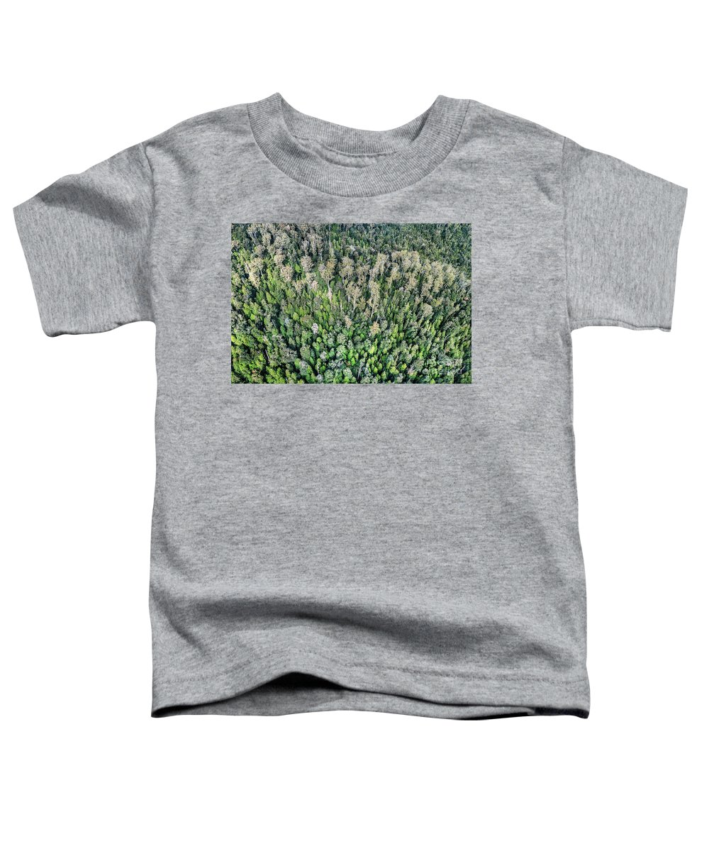 Kremsdorf Toddler T-Shirt featuring the photograph Above The Treetops by Evelina Kremsdorf