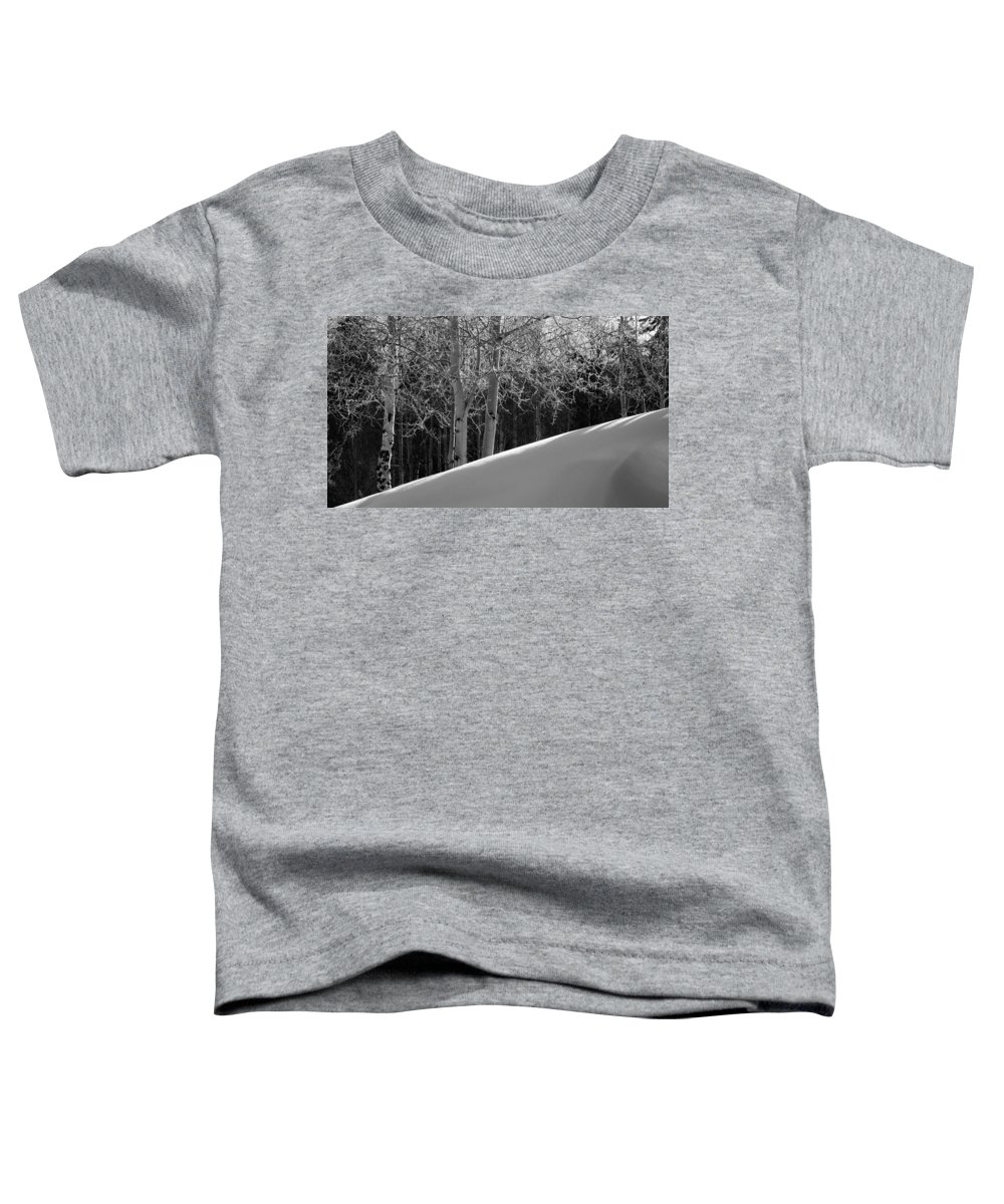 Colorado Toddler T-Shirt featuring the photograph Aspencade by Skip Hunt