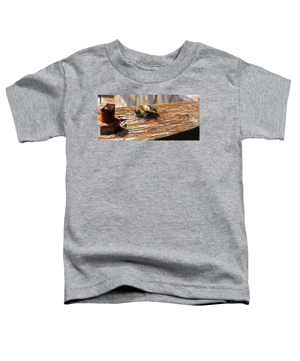Bee Toddler T-Shirt featuring the photograph Bee-u-tiful by Ed Smith