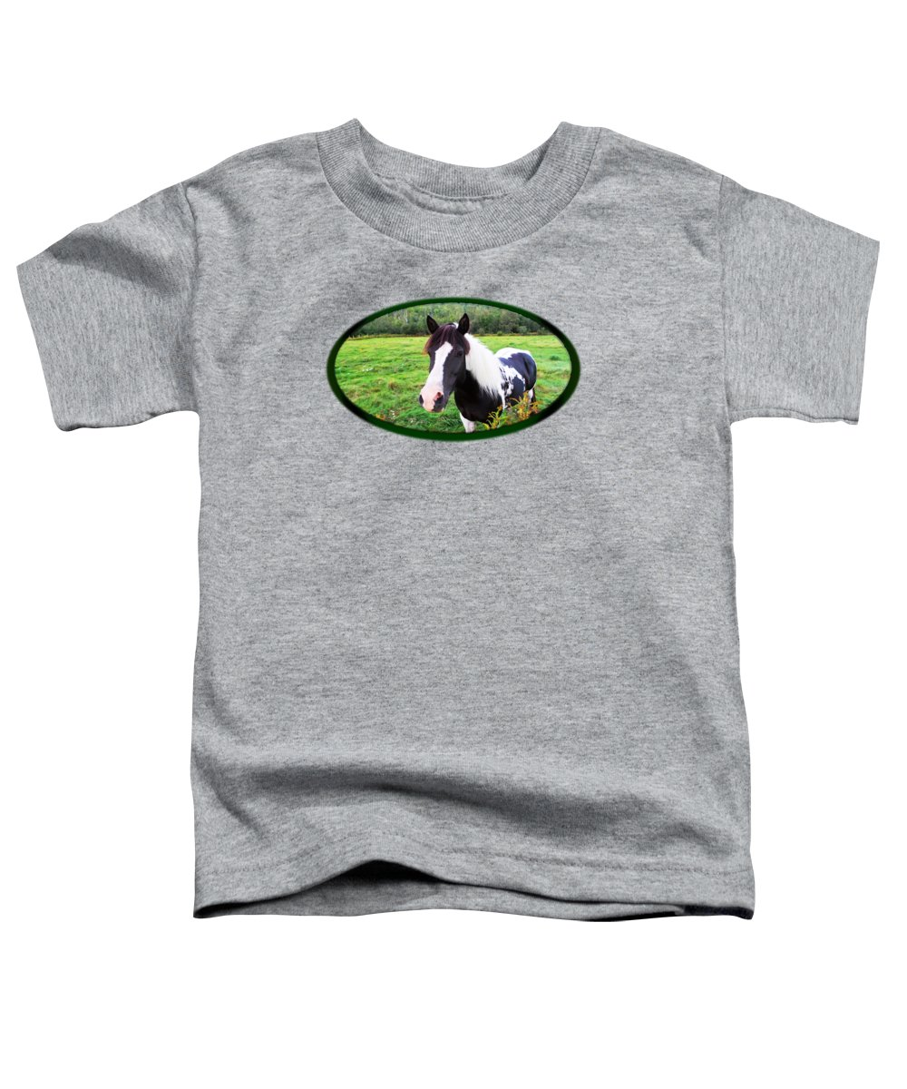 Horse Pasture Photographs Toddler T-Shirts