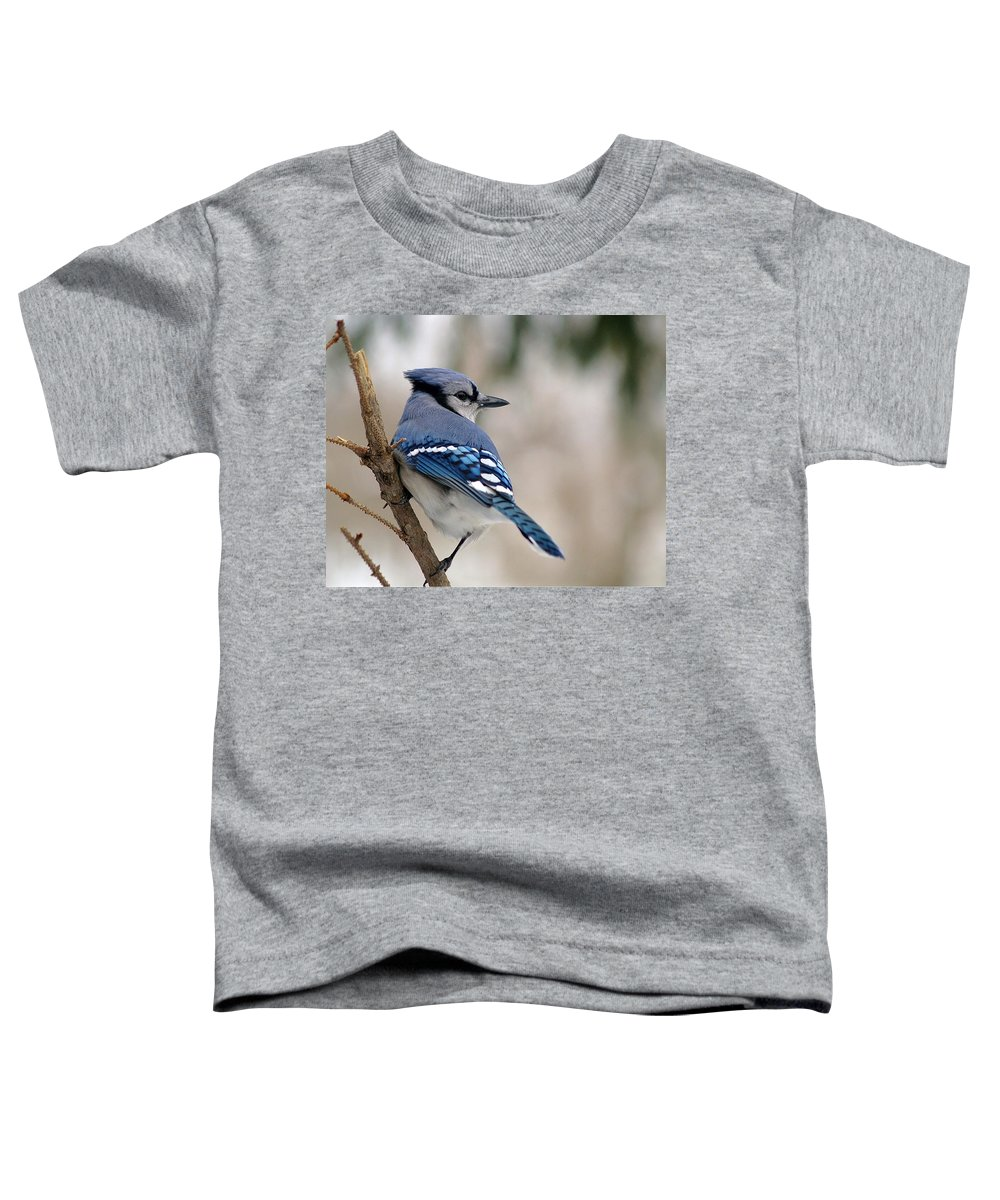 Blue Jay Toddler T-Shirt featuring the photograph Blue Jay by Gaby Swanson