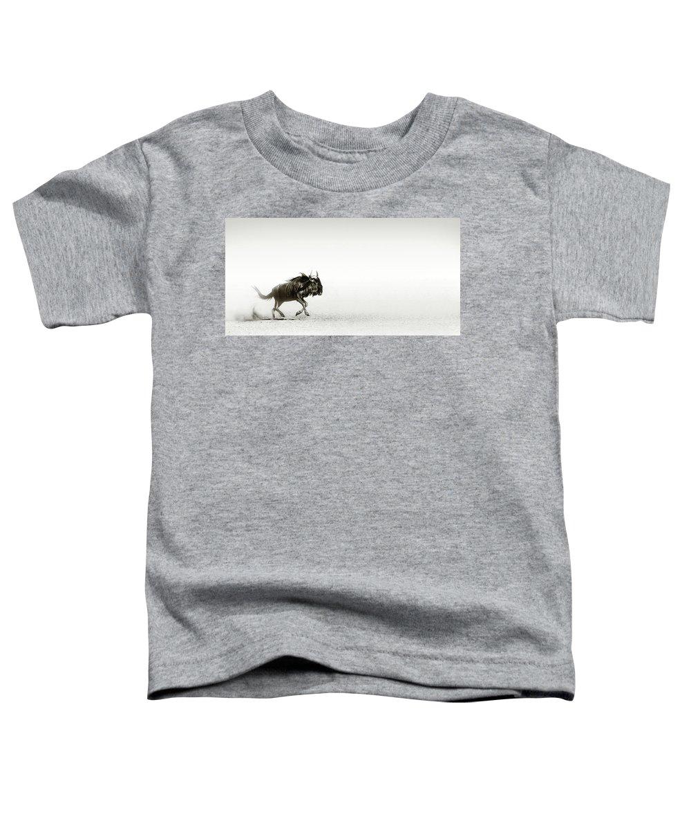 Blue; Wildebeest; Desert; Run; Dust; Sand; Dusty; Art; Artistic; Black; White; B&w; Monochrome; Connochaetes; Taurinus; Open; Plane; Speed; Action; Motion; Antelope; Wild; Mammal; Animal; Wildlife; Nature; Africa; Kalahari; Flee; Gallop Toddler T-Shirt featuring the photograph Blue Wildebeest In Desert by Johan Swanepoel