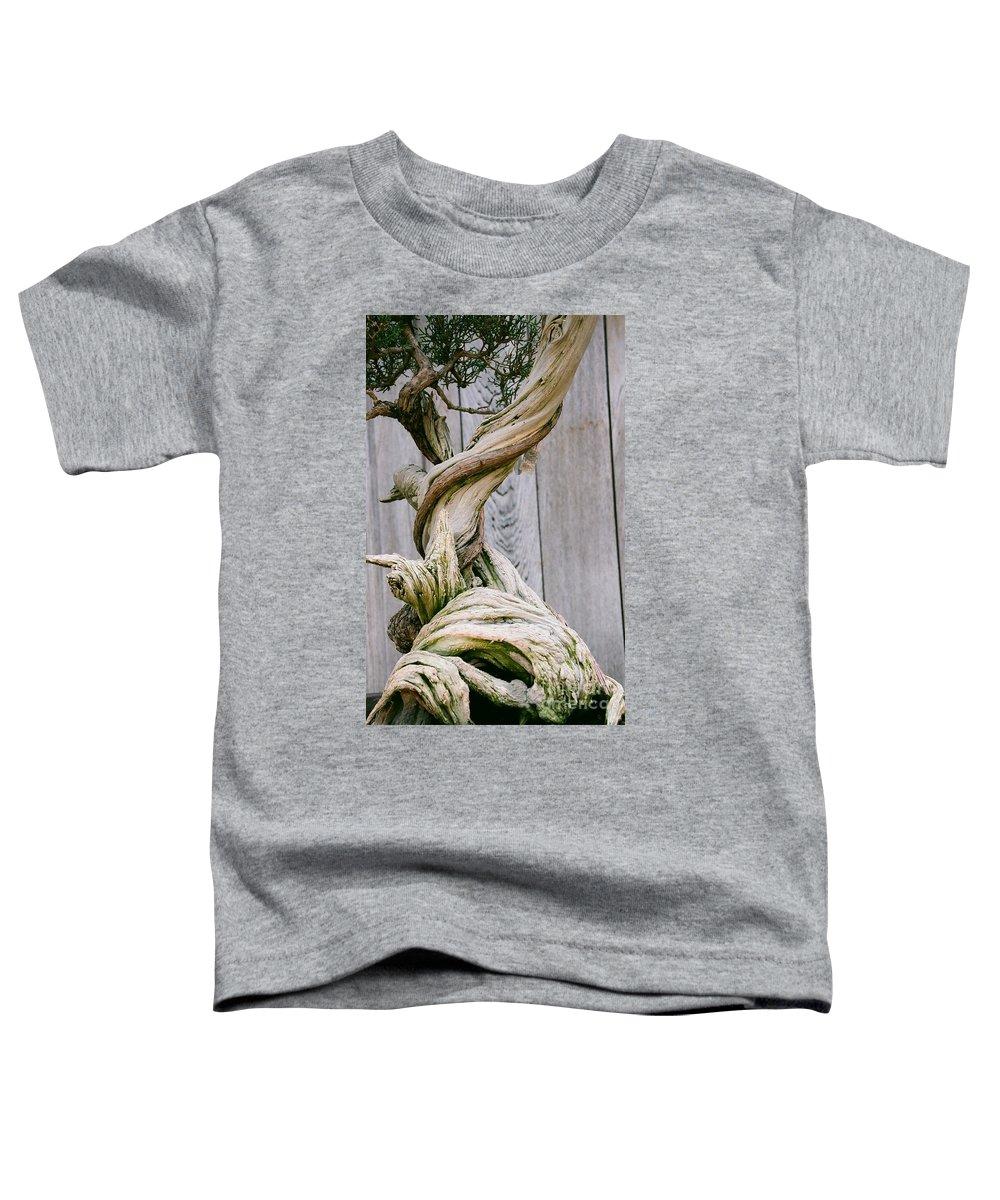 Tree Toddler T-Shirt featuring the photograph Bonsai by Dean Triolo
