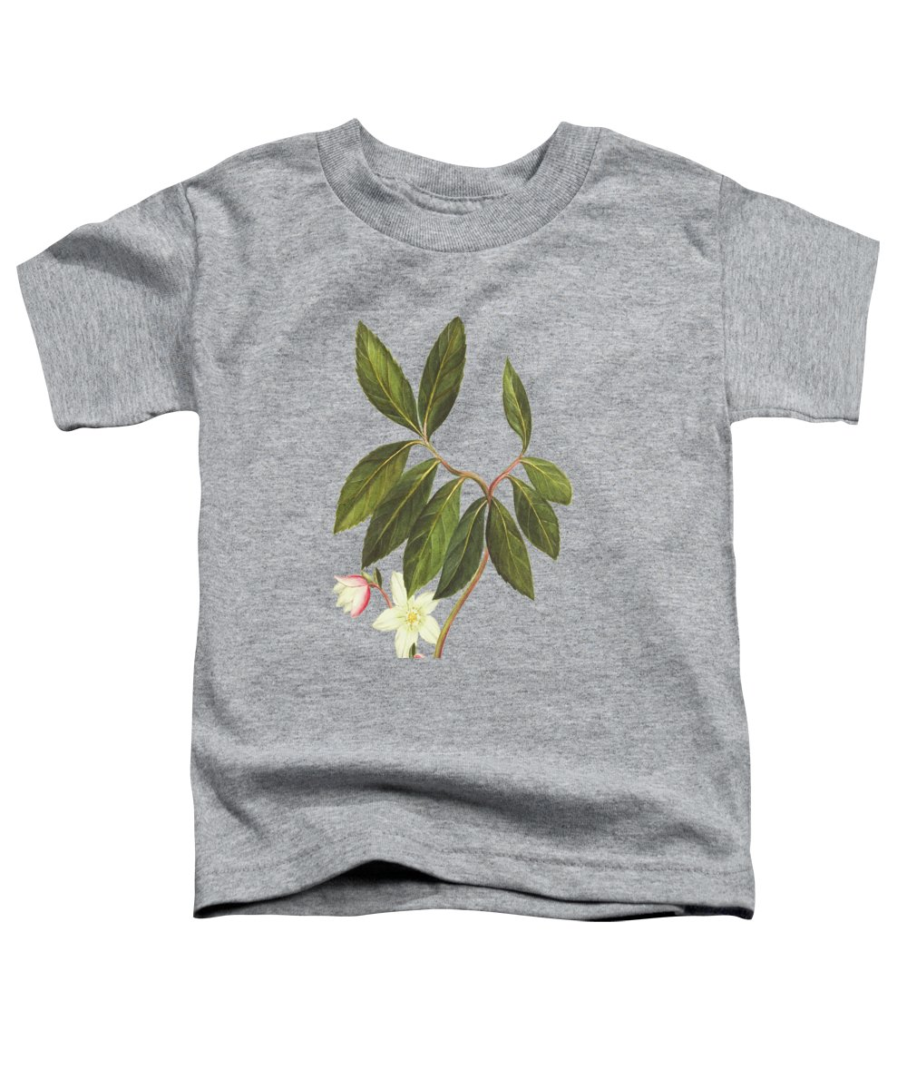 Branch Toddler T-Shirts