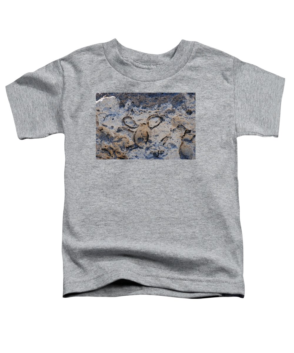 Ocean Toddler T-Shirt featuring the photograph Carved Catface by Rob Hans