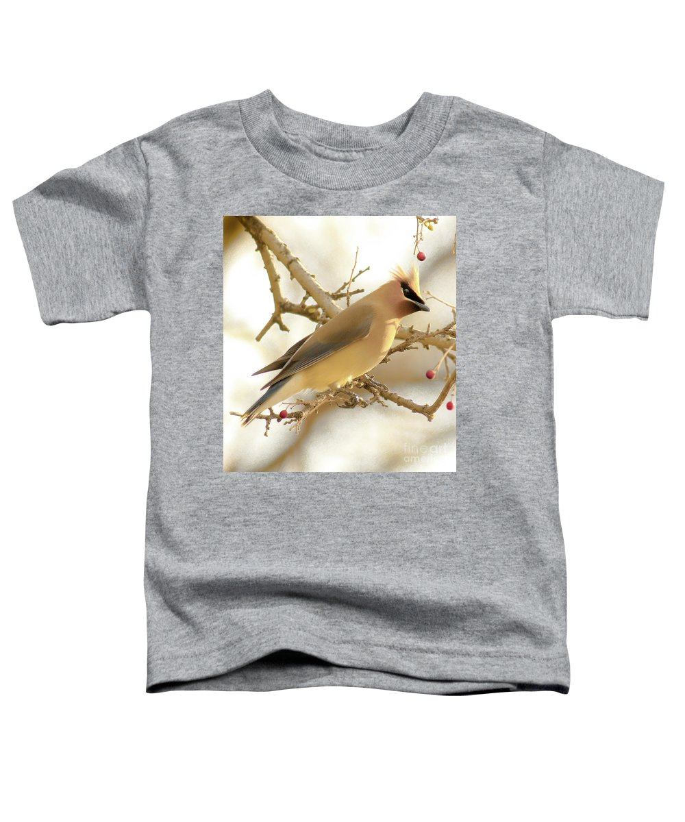 Cedar Waxing Toddler T-Shirts