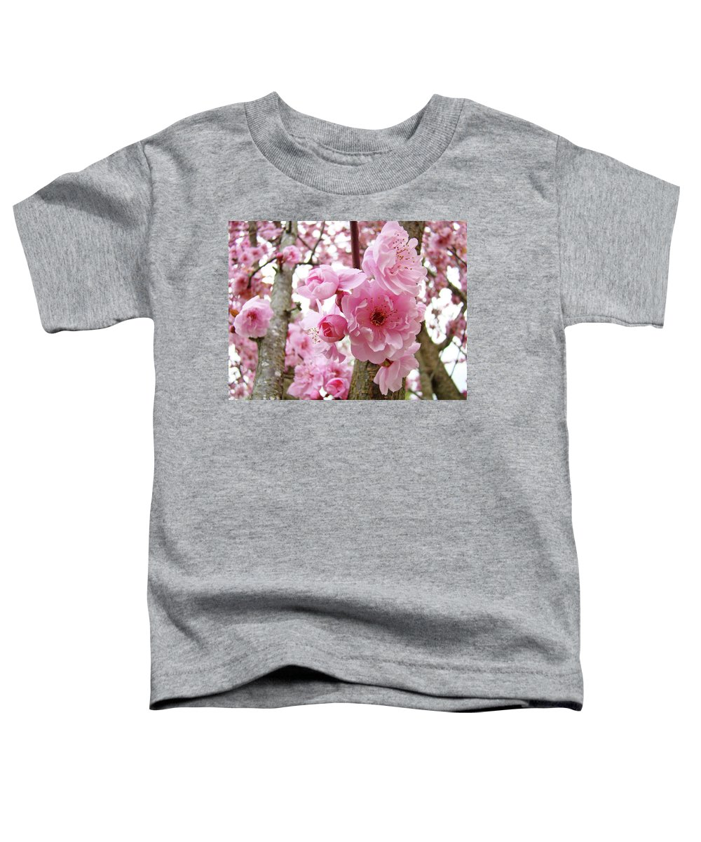 Nature Toddler T-Shirt featuring the photograph Cherry Blossoms Art Prints 12 Cherry Tree Blossoms Artwork Nature Art Spring by Baslee Troutman