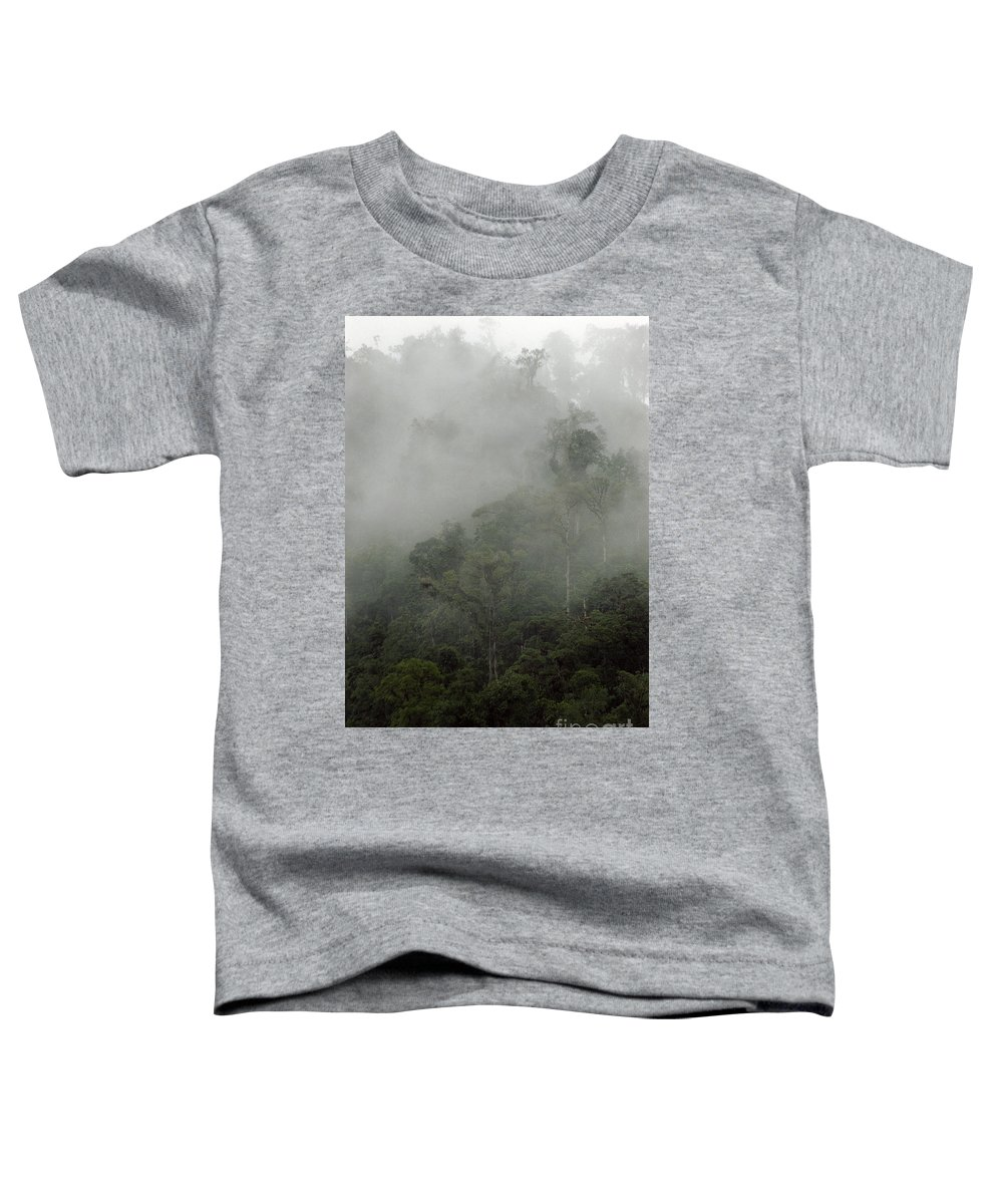 Rainforest Toddler T-Shirt featuring the photograph Cloud Forest by Kathy McClure