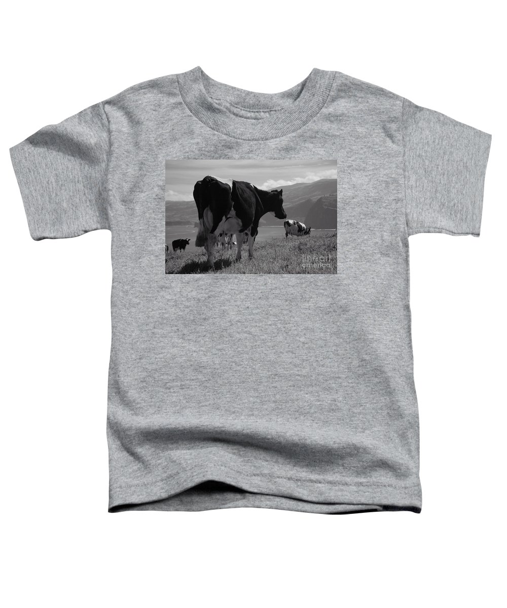 Azoren Toddler T-Shirt featuring the photograph Cows by Gaspar Avila