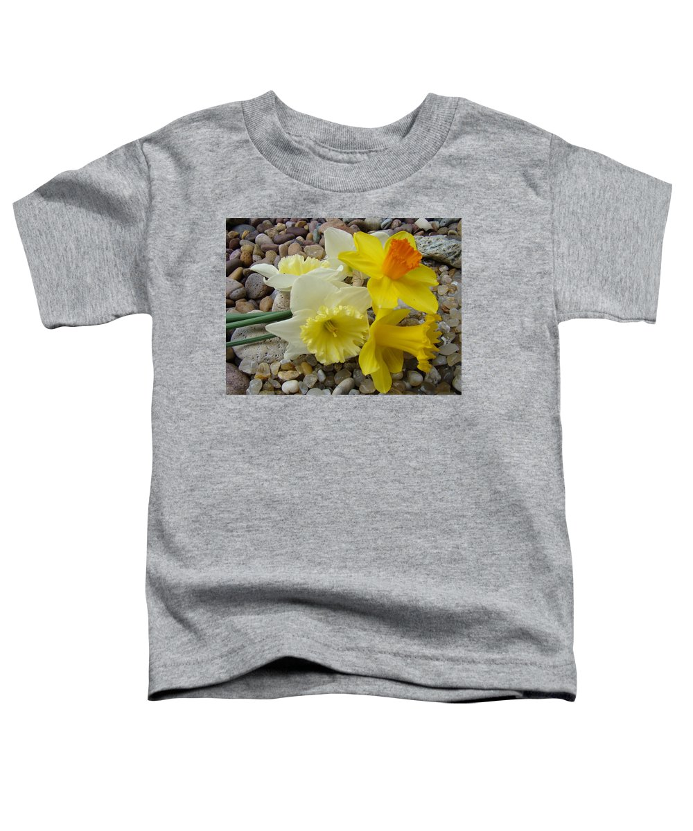 �daffodils Artwork� Toddler T-Shirt featuring the photograph Daffodils Flower Artwork 29 Daffodil Flowers Agate Rock Garden Floral Art Prints by Baslee Troutman