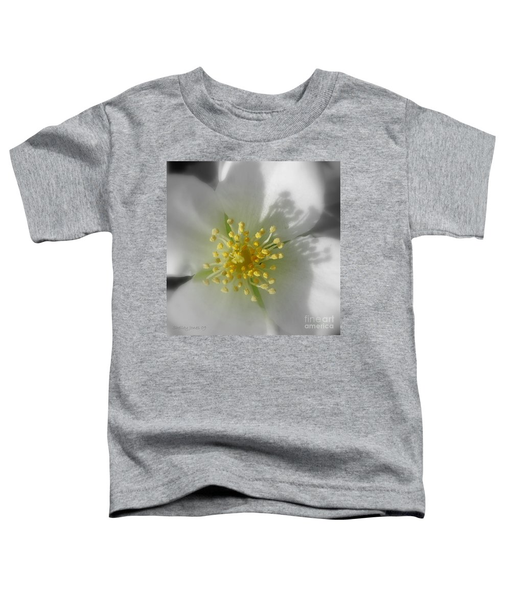 Photography Toddler T-Shirt featuring the photograph Dogwood by Shelley Jones