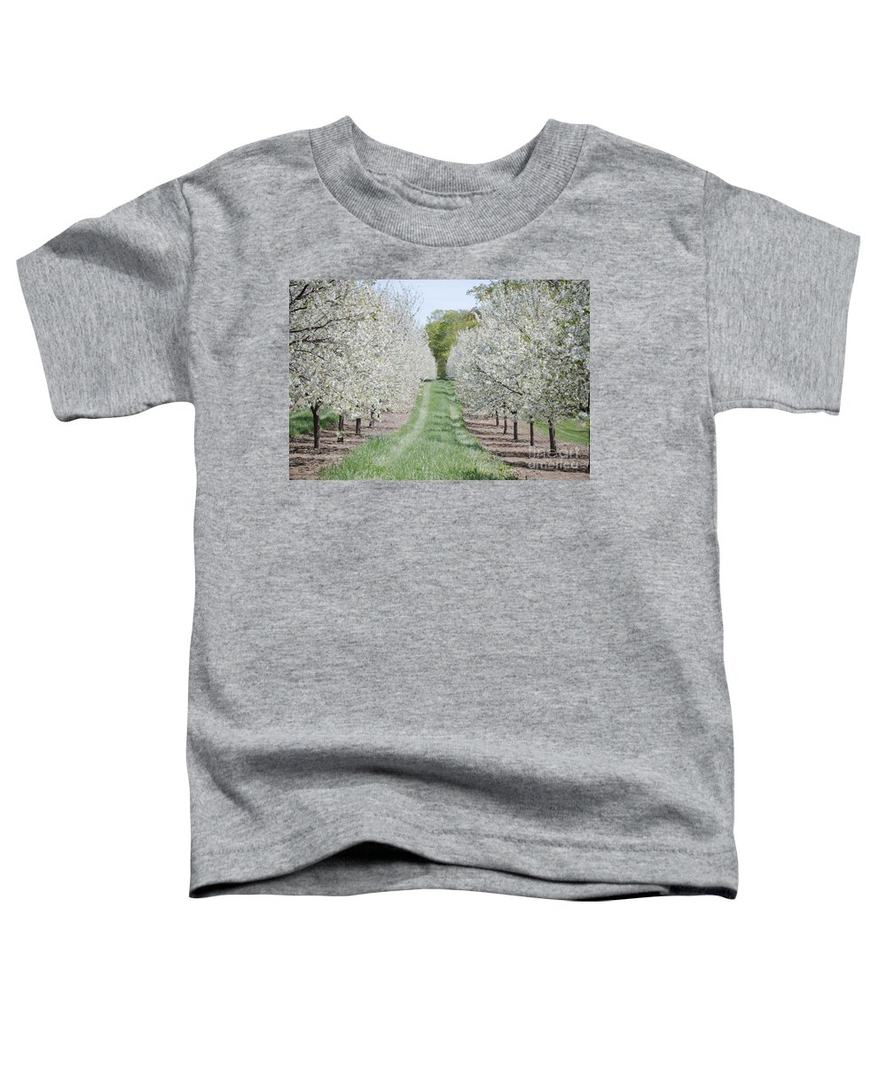 Door County Toddler T-Shirt featuring the photograph Door County Cherry Blossoms by Nikki Vig