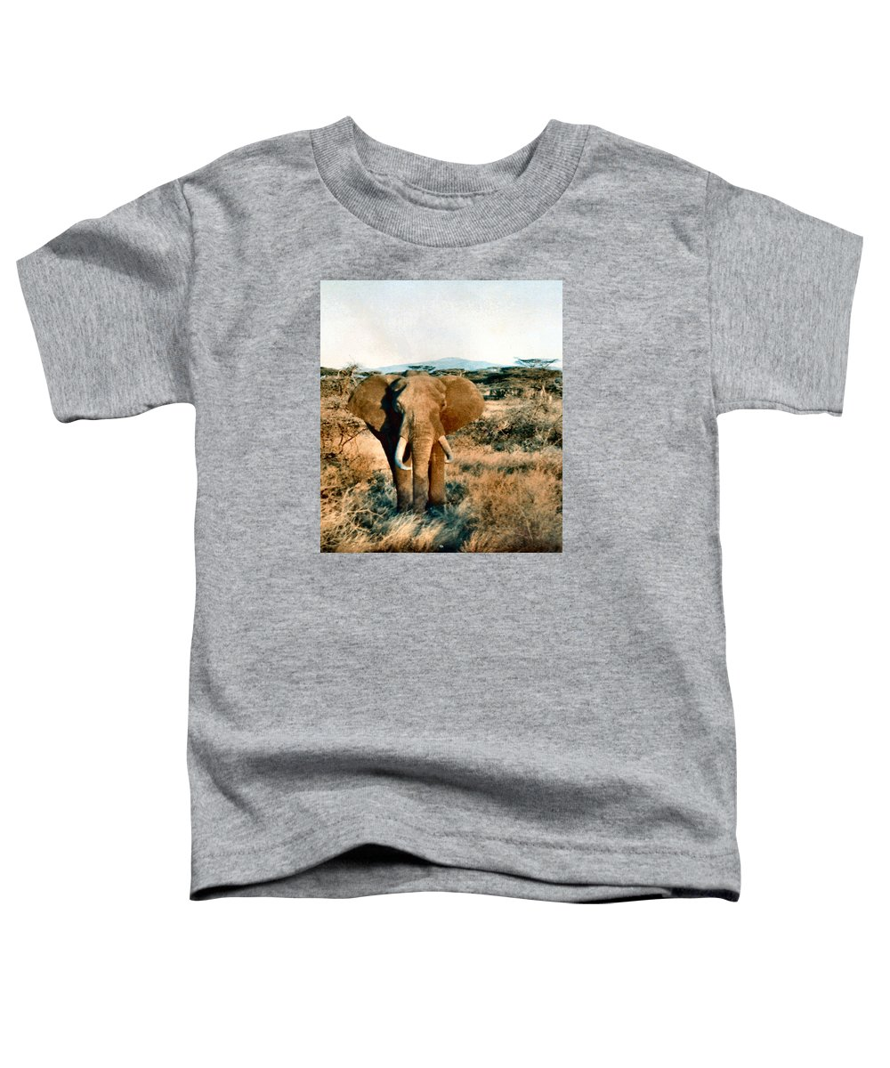 Elephant Toddler T-Shirt featuring the photograph Elephant Eyes by Lin Grosvenor