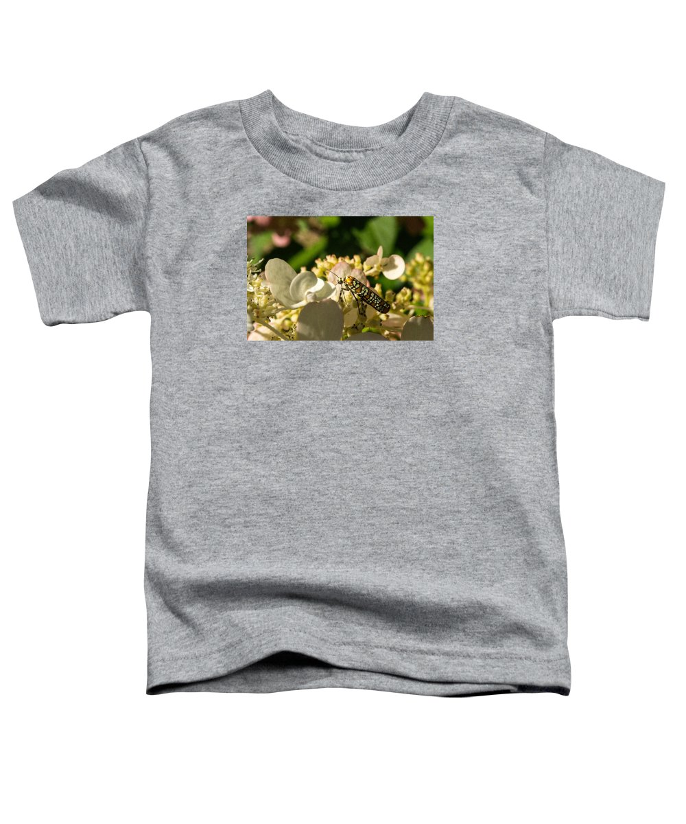 Ermine Toddler T-Shirt featuring the photograph Ermine Moth On Flower by Douglas Barnett