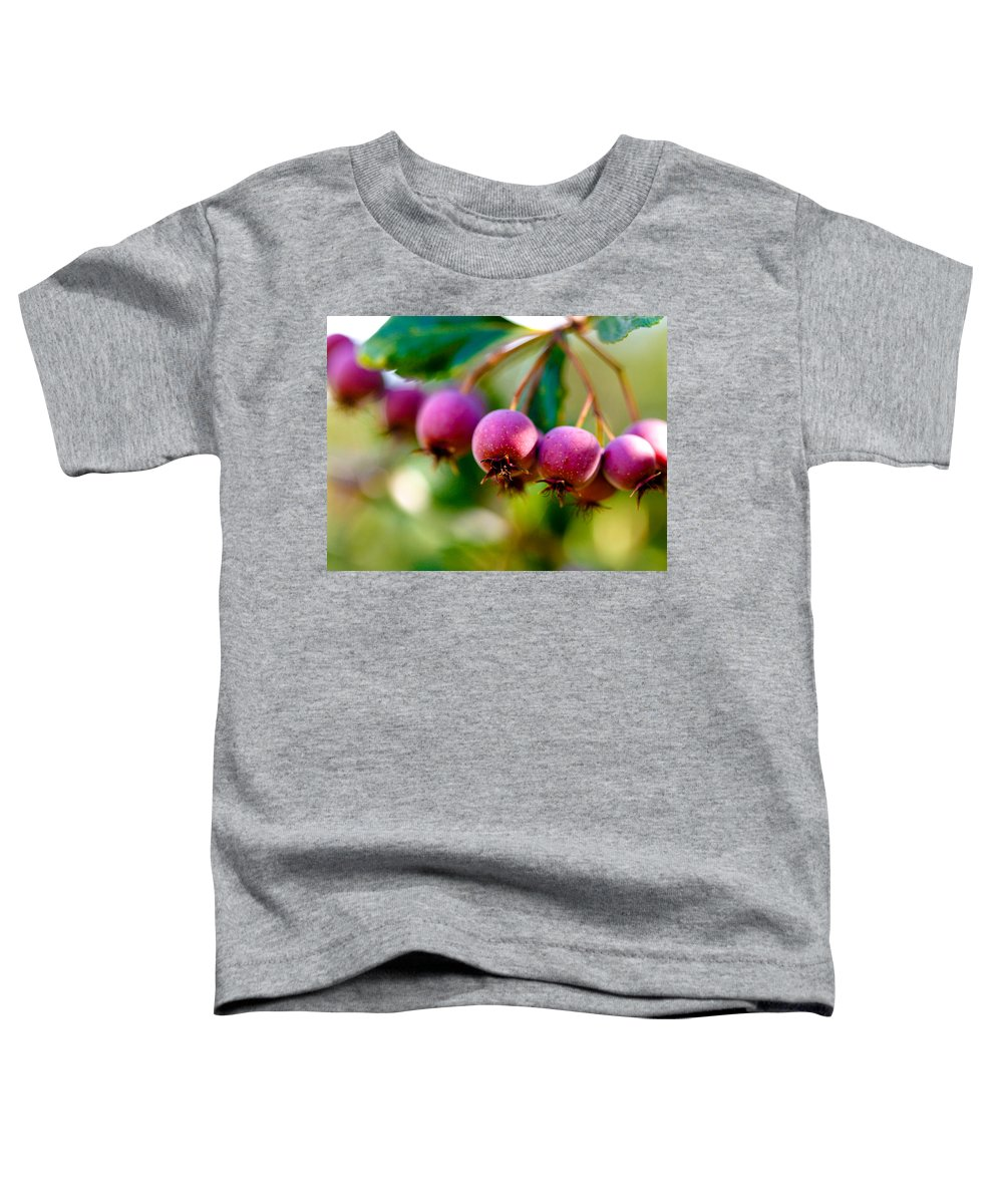 Berry Toddler T-Shirt featuring the photograph Fall Berries by Marilyn Hunt