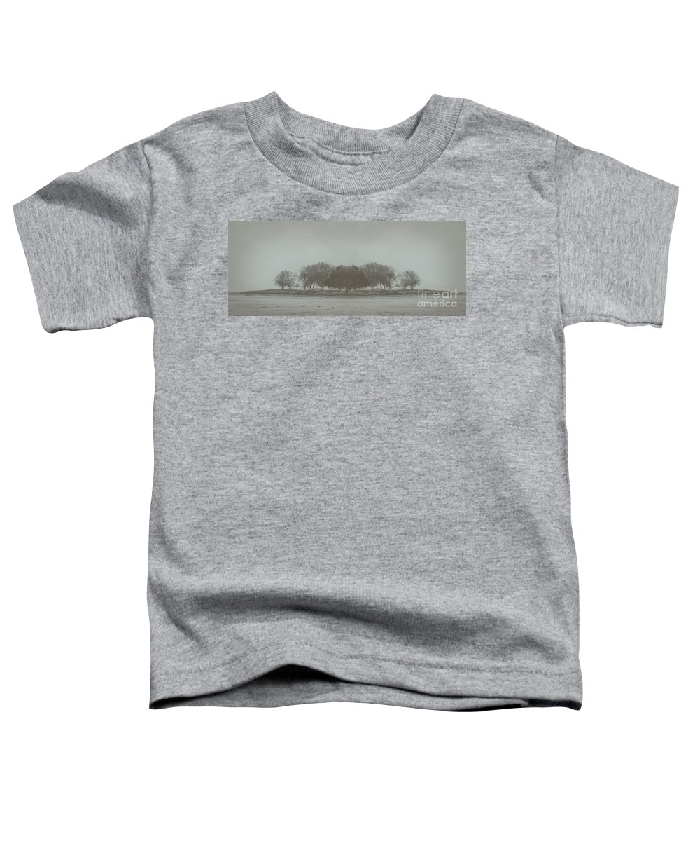 Landscape Toddler T-Shirt featuring the photograph I Will Walk You Home by Dana DiPasquale