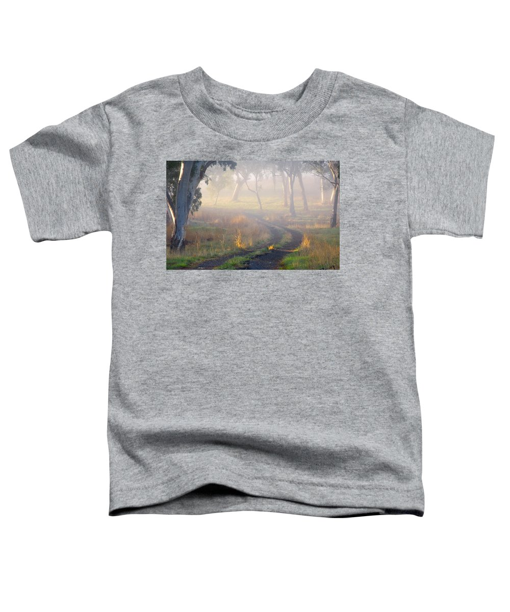 Mist Toddler T-Shirt featuring the photograph Into The Mist by Mike Dawson