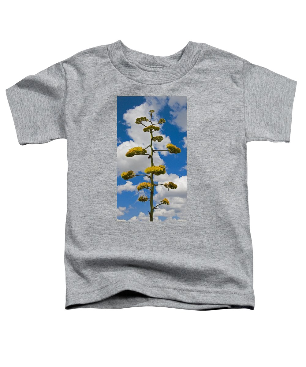 Blue Toddler T-Shirt featuring the photograph Jacobs Ladder by Skip Hunt