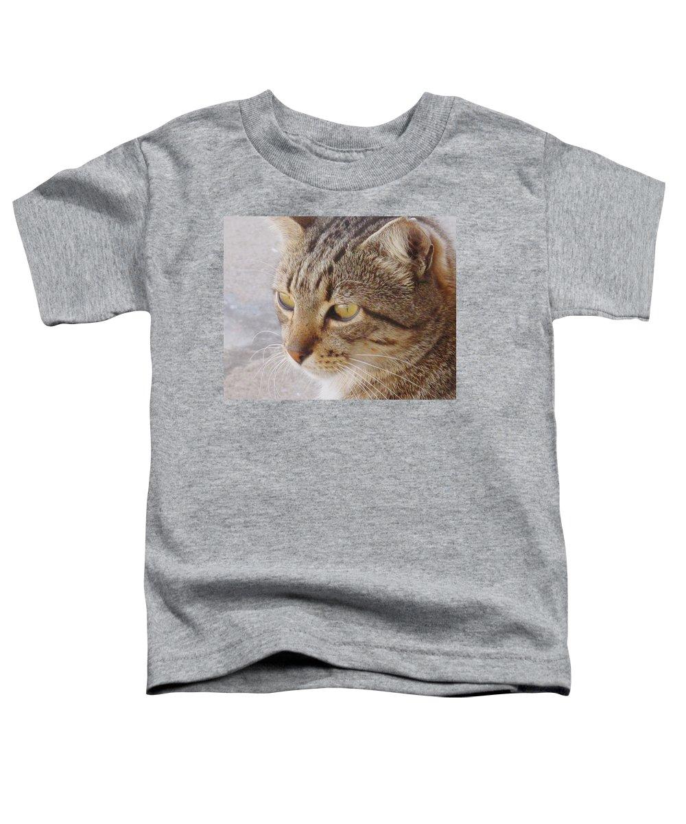 Cat Toddler T-Shirt featuring the photograph King Cat by Ian MacDonald